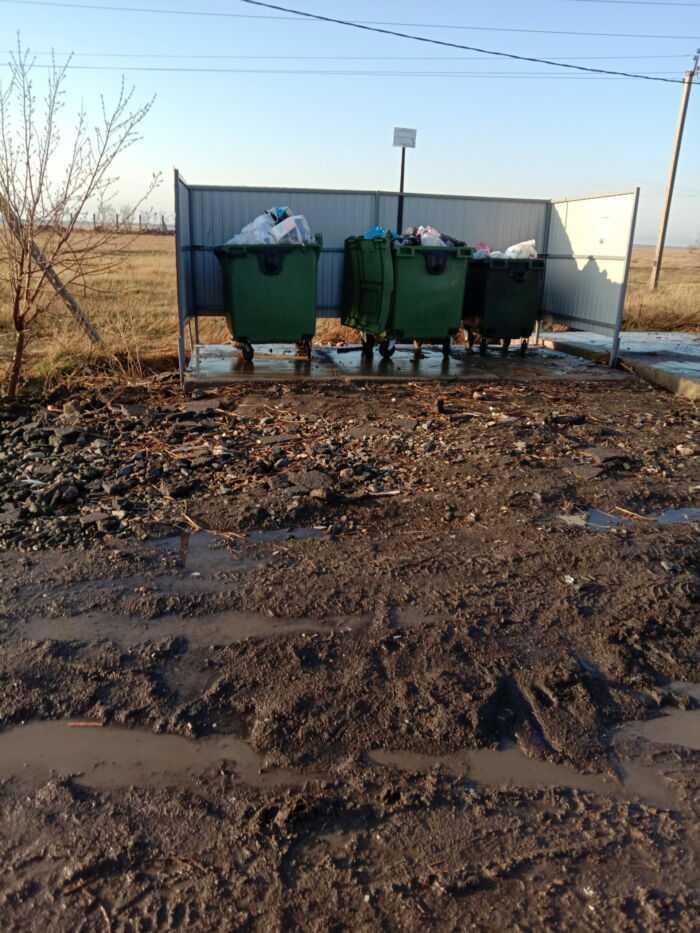 Мусорные баки в близи домов и из них разлетается мусор