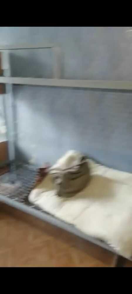 Общежитие 2 УрГПУ